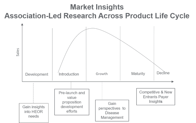 Market Insights life cycle
